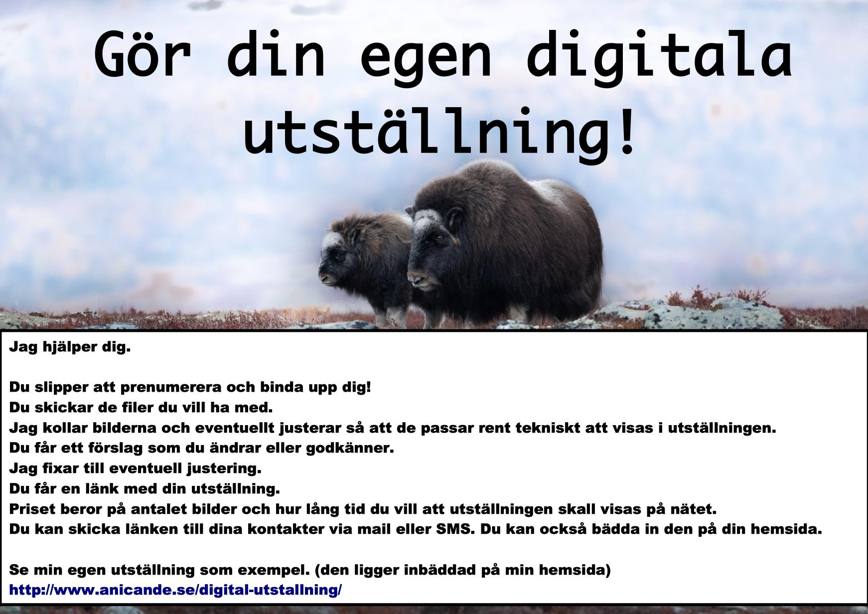 Digital utställning